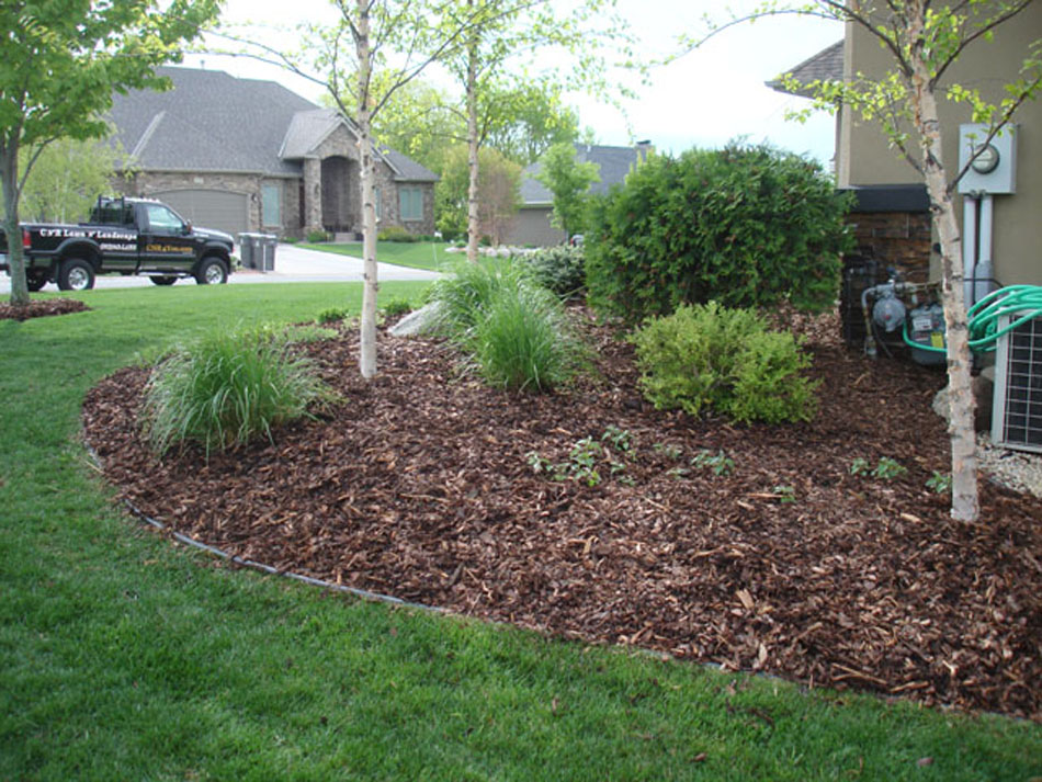 Landscaping With Mulch Pictures : Pine bark natural mulch photo